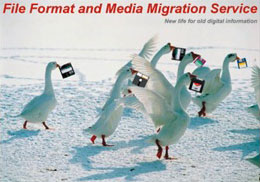photo of geese carrying floppy disks in their beaks, representing file format and media migration service